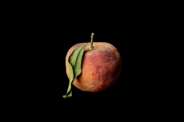 Akademikliniken Fruit Ad