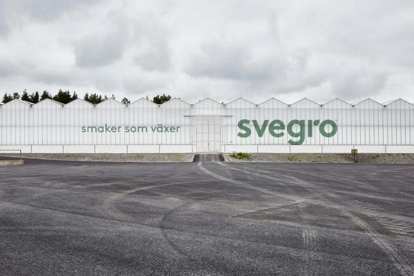 Svegro Identity